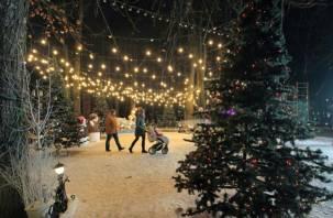 Смоленская область попала в топ-25 регионов для оздоровительного отдыха на Новый год