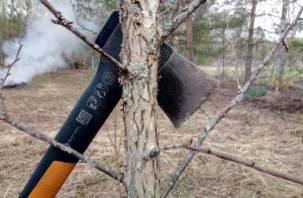 Нарубил на миллион: смолянин «ушел в минус» после похода в лес