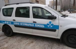 В Смоленске появилась «скорая помощь» для животных