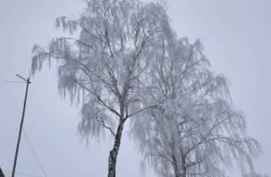 В России прогнозируют пятнистые осадки в декабре