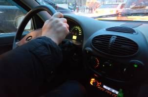 Затраты и высокая нагрузка. Реформу водительских экзаменов на права раскритиковали в МЭР