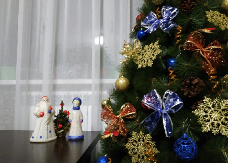 Россиянам дали советы по установке новогодней елки