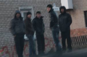 В Смоленской области поймали пять нелегалов