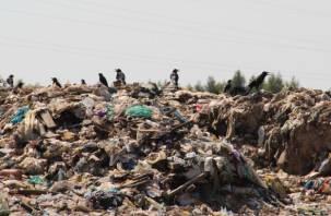 Стало известно, жители каких городов страдают от грязного воздуха