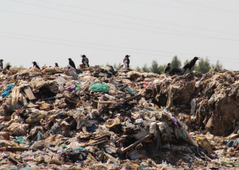 В Смоленской области построят новый «мусорный» завод