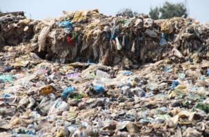 Коммунальщики прикарманивали деньги под видом выполнения работ по уборке свалок