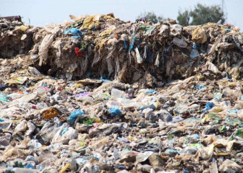 Путин возьмёт реализацию мусорной реформы под собственный контроль