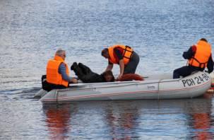 В Смоленске в Днепре обнаружили тело мужчины