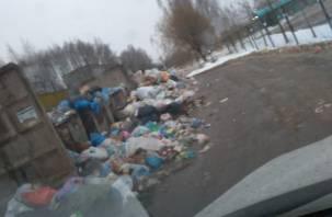 Стала грязнее: Смоленская область упала в экологическом рейтинге регионов