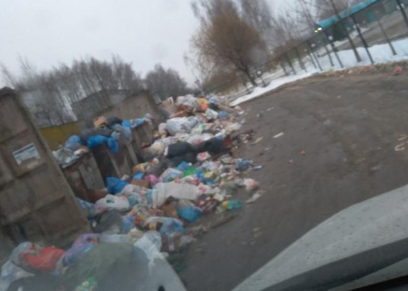 «Нормально?» В Смоленской области микрорайон утопает в мусоре