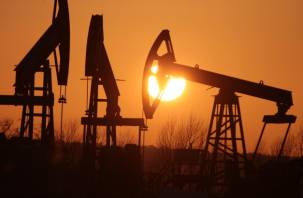 Названы сроки, когда в России закончится нефть