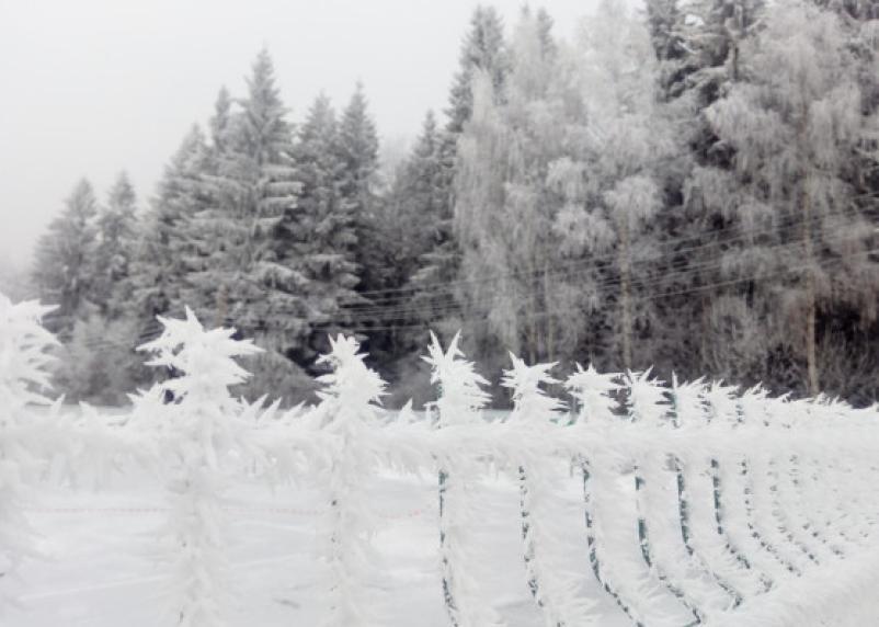 Росгидромет опубликовал прогноз погоды на зиму