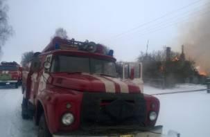 В Смоленской области массово горят дачи
