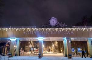 В Смоленске к новогодним праздникам обустроят Лопатинский сад