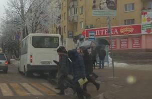 Очевидцы: смоленский маршрутчик гоняет на «красный»