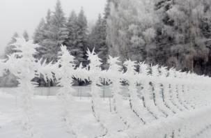 В Гидрометцентре рассказали, куда делся весь снег