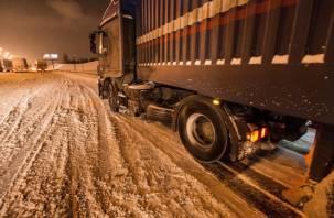 В России снова бесследно исчез грузовик с мясной продукцией