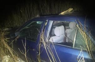 Смоленский водитель едва не погиб из-за лося