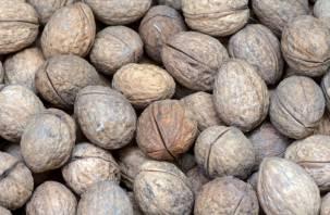 Сколько в сутки можно съесть? Чем грозит чрезмерное употребление орехов