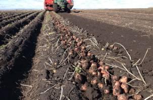 Начинающие смоленские фермеры скоро могут получить и полтора миллиона, и даже три