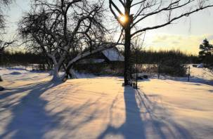 Три знака зодиака смогут решить все свои проблемы в конце зимы