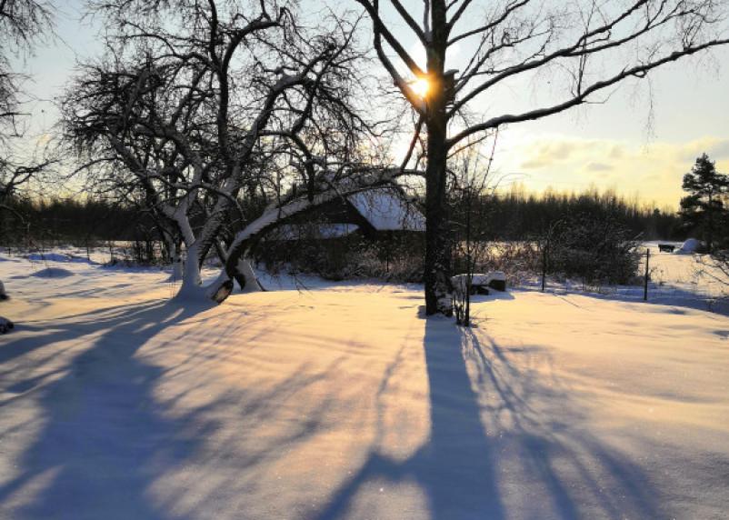 В России потеплеет на 25 градусов