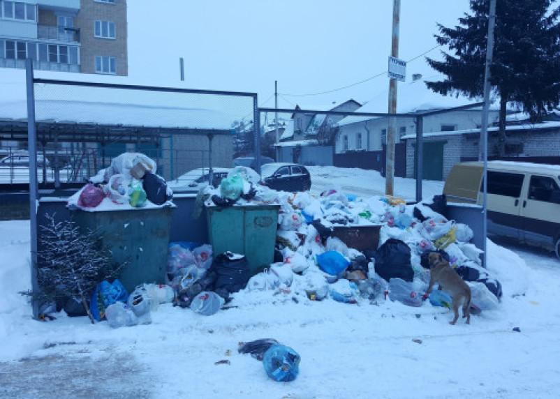«Передел мусорного бизнеса». Смоляне продолжают жаловаться на бардак во дворах