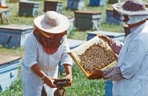 Смоленские и белорусские пчеловоды участвуют в Международном форуме