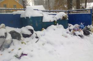 В  Красноборской санаторно-лесной школе месяц не вывозят мусор и не откачивают канализацию