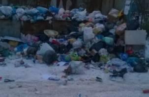 Вообще ничего не вывозят. Рославльчане жалуются на мусор в центре города