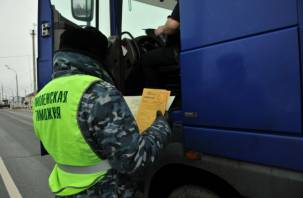 Смоленские таможенники задержали сто тонн санкционки. Нарушители стали вести себя агрессивно