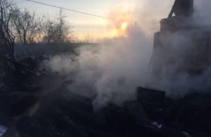 В Смоленской области огонь забрал жизнь мужчины