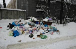 В России предложили снизить тарифы на вывоз мусора