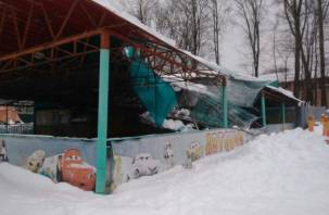 В Лопатинском саду пояснили обрушение крыши автодрома