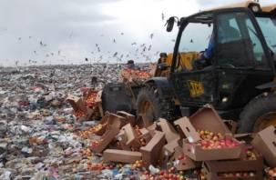 Лучше – под нож, чем раздавать. Путин рассказал, зачем в России уничтожают продукты