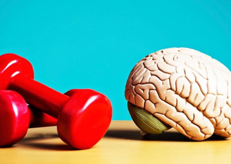 Назван один из возможных способов предотвратить болезнь мозга