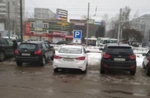 В Смоленске активисты борются с автохамами. Наказали очередного инвалида