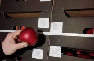 На Смоленщину пытались ввезти яблоки с поддельными документами