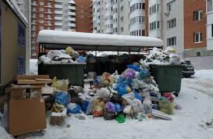 Премьер-министр РФ Дмитрий Медведев заморозил тарифы на вывоз мусора