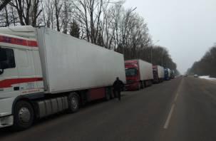 Смоленские пограничники задержали караван фур с санкционкционными товарами