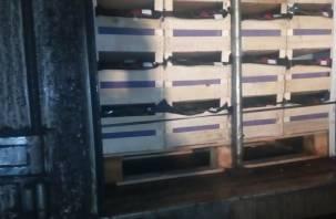 На Смоленщине задержаны грузовики с подозрительными фруктами из Беларуси