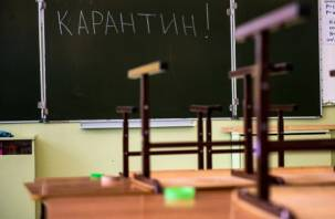В Смоленске школьники досрочно отправятся на каникулы
