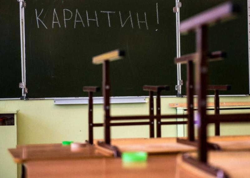 Грипп продолжает лютовать. В Смоленске полностью закрыли на карантин семь школ