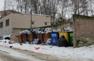 Смоленские чиновники нагло врут про раздельный сбор мусора?