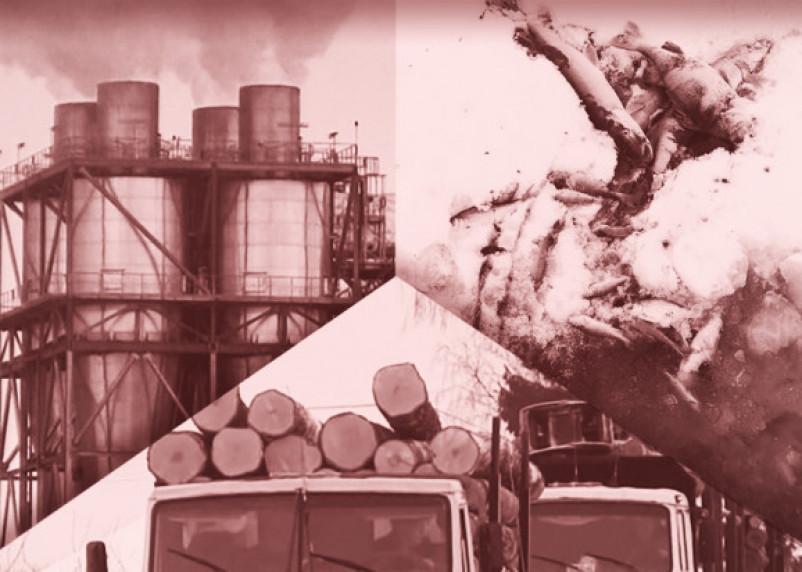 Отравленный Гагарин: инвестиции в Смоленской области привели к экологическому бедствию