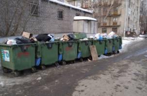 В Смоленске мусорная реформа не работает
