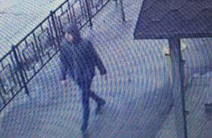 Видео нападения на девушку в Смоленске попало в сеть