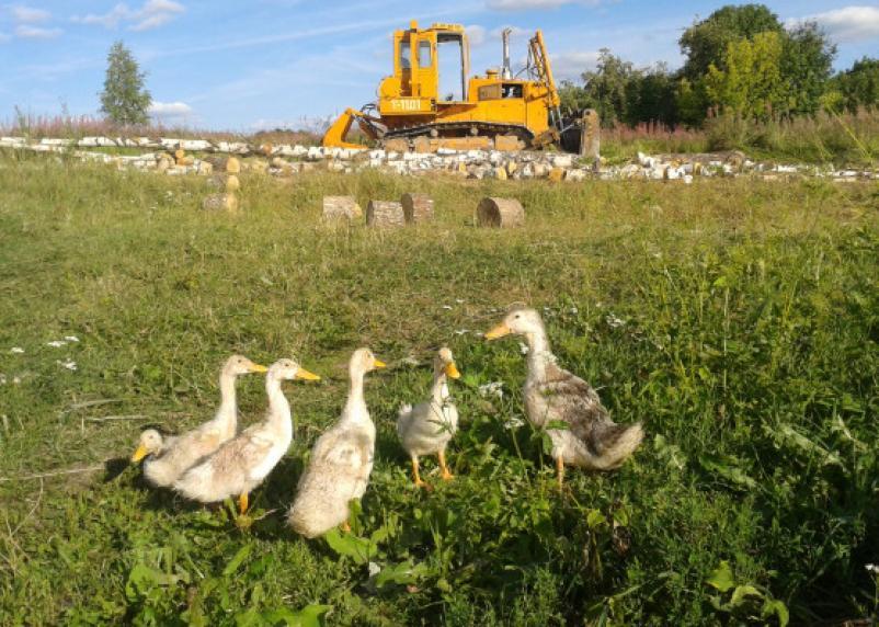 Смоленским поселениям помогут деньгами с застройкой, водоснабжением и газификацией