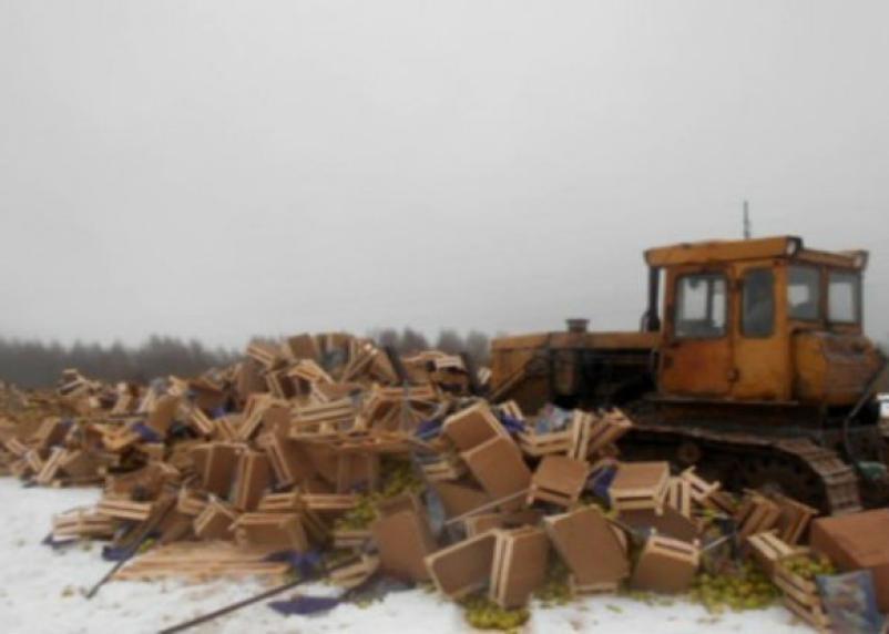 Вчера на Смоленщине «похоронили» 26 тонн овощей и фруктов