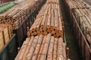 В Госдуме предлагают запретить экспорт древесины из России до 2035 года